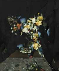 on reflection, material e11 (after j. brueghel the elder) by ori gersht