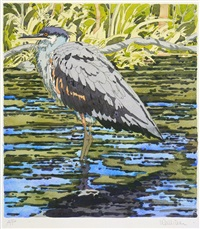 immature great blue heron by neil welliver