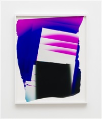 artwork 255 by mariah robertson