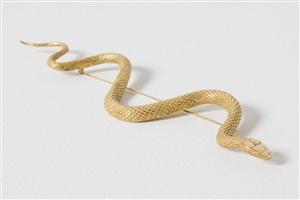 snake by rob wynne