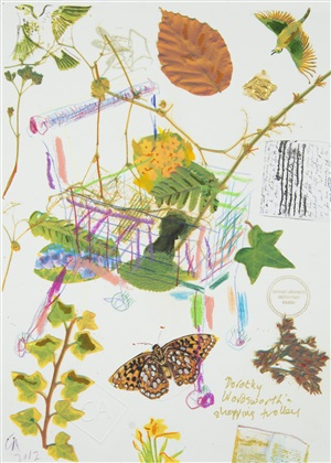 dorothy wordsworth's shopping trolley by conrad atkinson