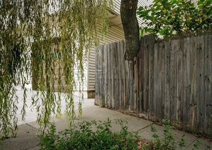 nurture willow by j john priola