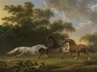 stallions in a paddock by charles towne the younger