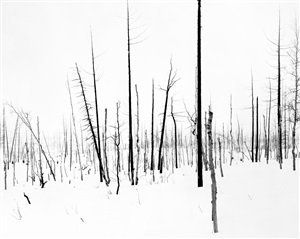 69th parallel 6 by darren almond