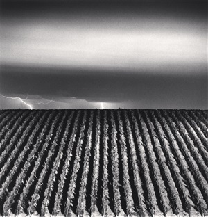 chateau lafite rothschild, study 6, bordeaux, france, 2012 by michael kenna