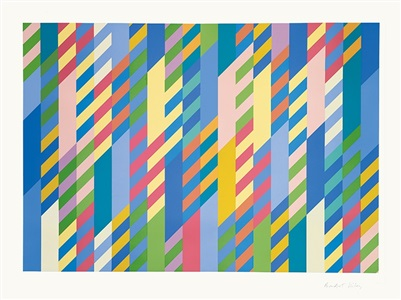 the armory show by bridget riley