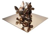 vanité aux papillons by philippe pasqua