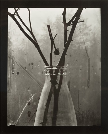 Untitled Twigs In Vase By Gunnar Smoliansky On Artnet