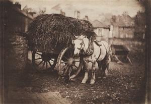 work horse and hay cart, bristol, u.k. by john bevan hazard