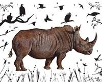 southern white rhinoceros, zimbabwe by james prosek