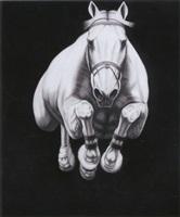 #17 by joseph piccillo