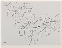 branche de fleurs (recto); studies for cutouts (verso) by henri matisse