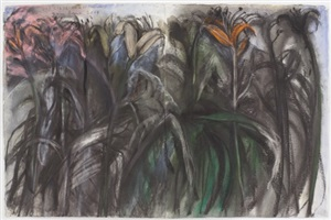 day lilys on cottonwood by jim dine