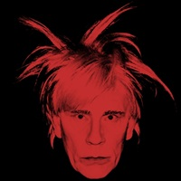 andy warhol / self portrait (fright wig) (1986) by sandro miller