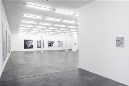exhibition view by tobias pils