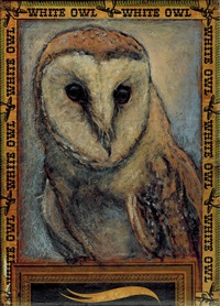 barn owl / white owl by ed musante