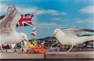 west bay (seagulls eating chips) by martin parr