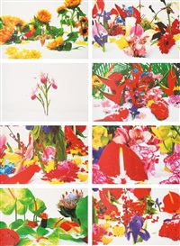 winter garden (portfolio of 8 prints) by marc quinn