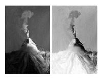 fumée (diptych) by annette lemieux