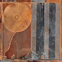 pivot irrigation #8, high plains, texas panhandle, usa by edward burtynsky
