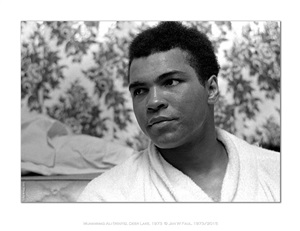 the ali portraits - ali head by jan w. faul
