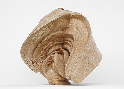 willow by tony cragg