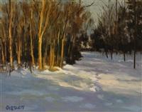 last light by harley w. bartlett