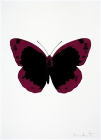 the soul ii - raven black, fuchsia pink, blind impression by damien hirst