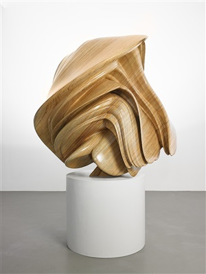 willow ii by tony cragg