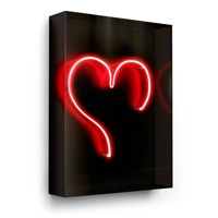 big heart by david drebin