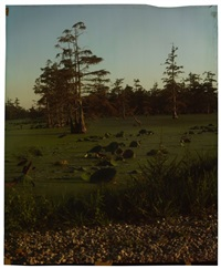 county line at annis brake, variation c, (from the mississippi series) by john chiara