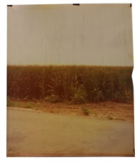 old river road at carter, (from the mississippi series) by john chiara