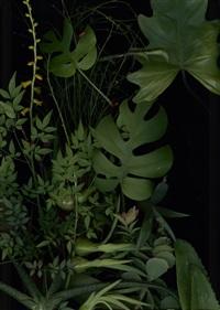 jardim by luzia simons