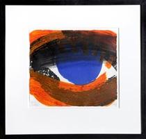 eye by howard hodgkin