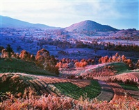 you are wherever your thoughts are, north kivu, eastern congo by richard mosse