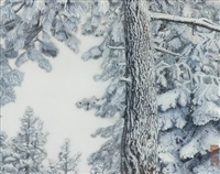 tree and branches with heavy snow by robert glenn ketchum
