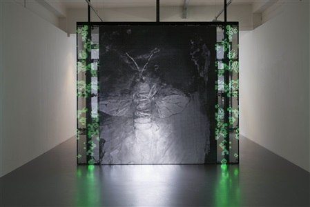 with a rhythmic instinction to be able to travel beyond existing forces of life green rule1 by philippe parreno