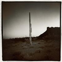 saguaro #7, from the saguaro suite, arizona by richard misrach