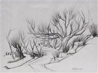 tree study - rio chiquito by doel reed