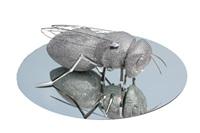 crystal beetle by feng shu