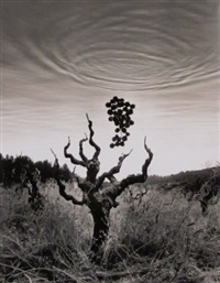 untitled (homage to wine country) by jerry uelsmann