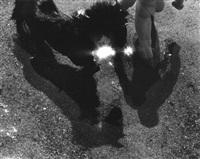 equestrian sun burst (104220-c) by dianora niccolini