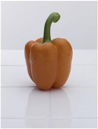 paprika by florian slotawa