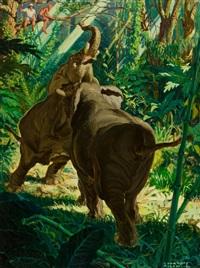 territorial elephants by courtney allen