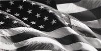 untitled (american flag x-5) by robert longo