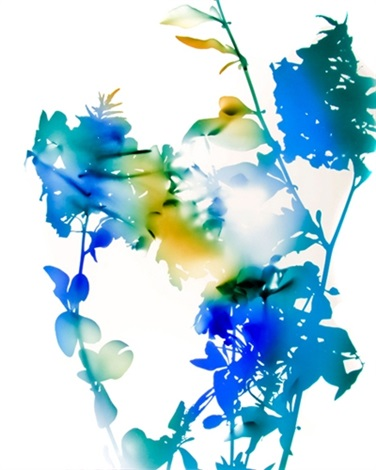 010b by james welling