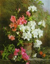 Martha Darley Mutrie, Still life with pink and white azaleas