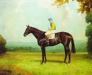 "Thomas Percy Earl, ""Epigram"", a brown racehorse with jockey up"