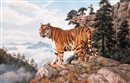 Willem de Beer, Indo-Chinese tiger - Amoyan - On the mountainside