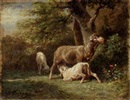 Emile Jacque, Sheep attending her young